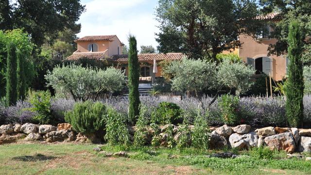 Un vaste jardin planté de vignes, d'oliviers et de lavandes