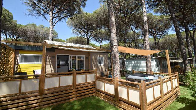 Votre cottage sous les pins