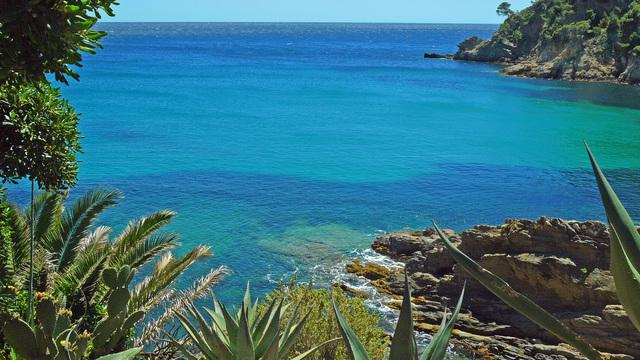 La Calanque de Cavalaire-sur-mer